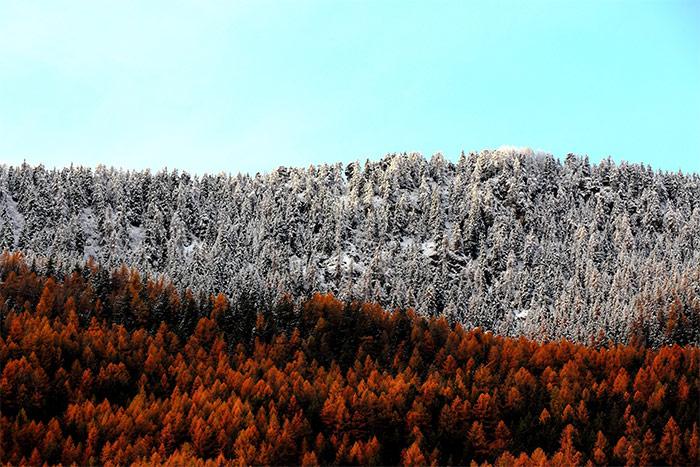 25 Stunning Winter Landscape Photos