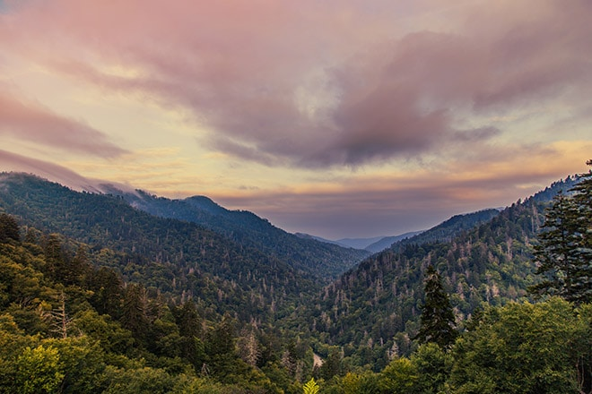 Photography Guide to Great Smoky Mountains National Park