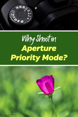 how to use aperture priority mode