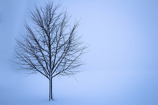 10 Ideas for Winter Landscape Photos