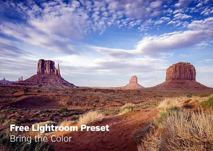 Free Lightroom Preset: Bring the Color