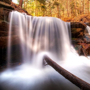 15 Ideas for Your Autumn Photography