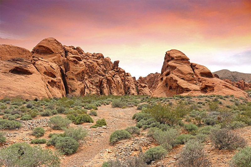 The Best Locations in Nevada for Photography
