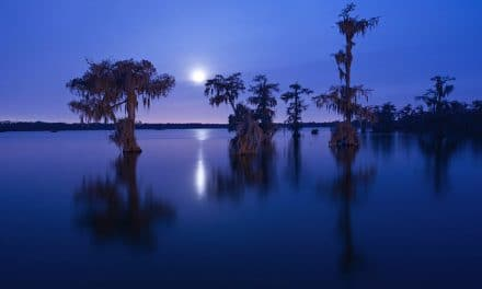 The Best Places to Photograph in Louisiana