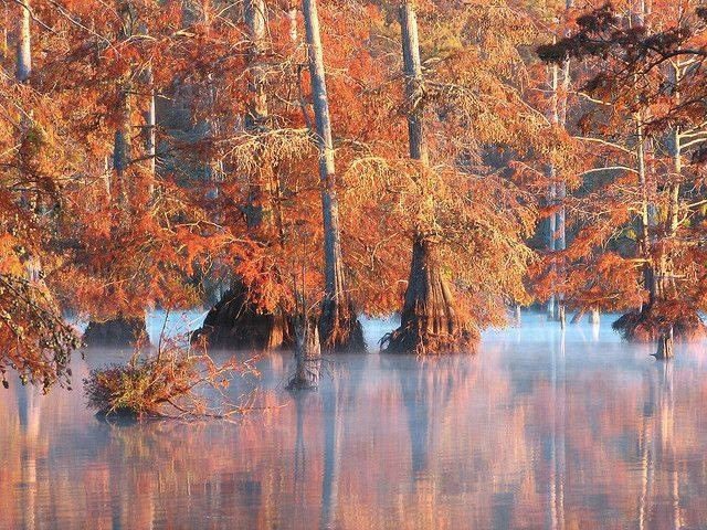 The Best Locations in Mississippi for Photography