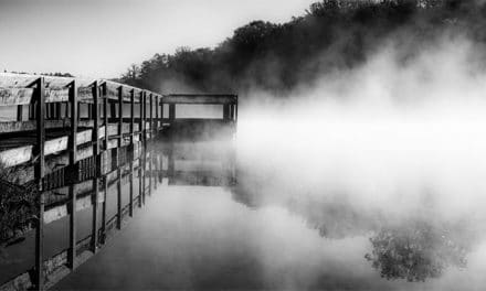 How to Photograph in Mist & Fog