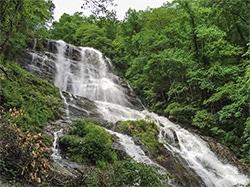 Amnicolola Falls State Park