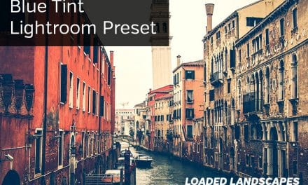 Free Lightroom Preset: Blue Tint