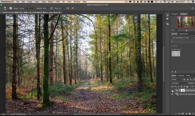 How to Use Luminosity Values in Photoshop for Incredible Control Over Colors