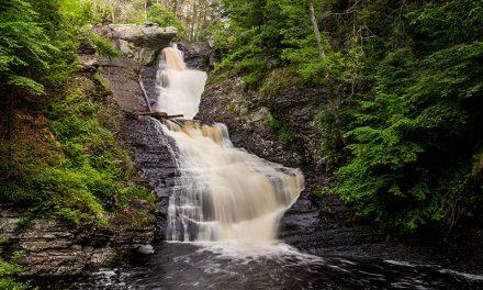 Raymondskill Falls (Pennsylvania)