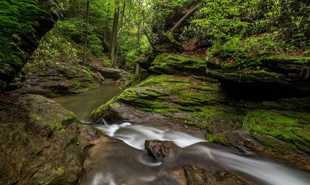Photographing the Tucquan Glen Nature Preserve (Pennsylvania)
